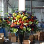 レバンガ北海道様開幕お祝いスタンド花
