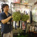 札幌ショップの花飾り
