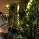 札幌市壁面造花の植栽